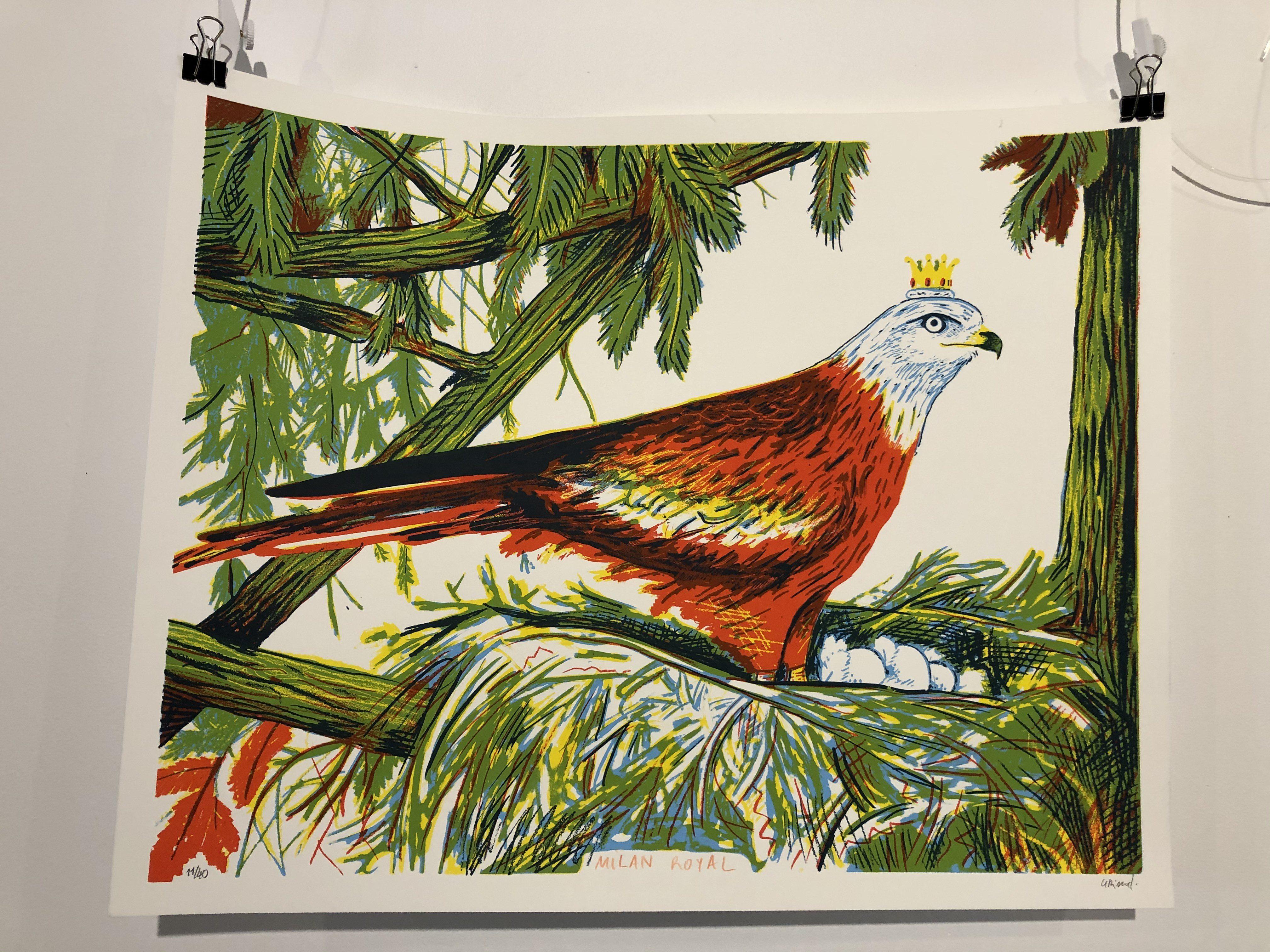 Drôle d'oiseaux – Geoffrey Grimal