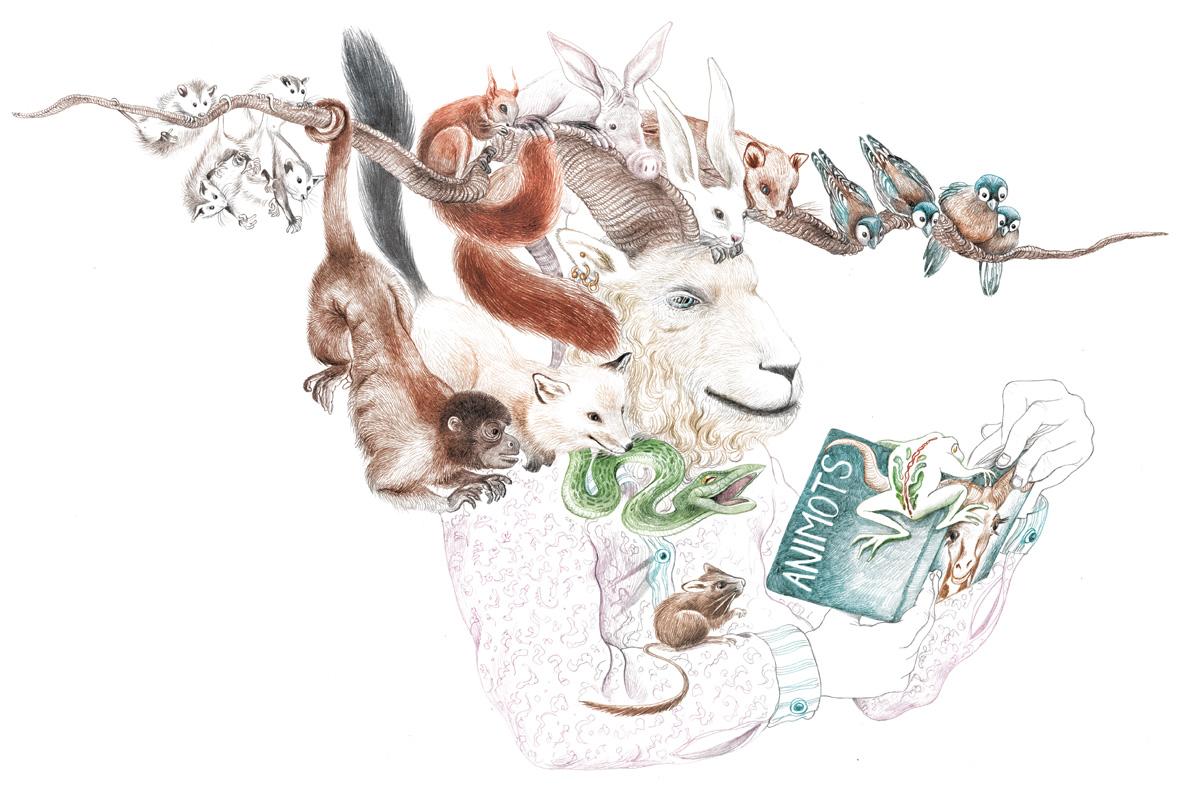 Bouquine Job : bestiaires et bestioles